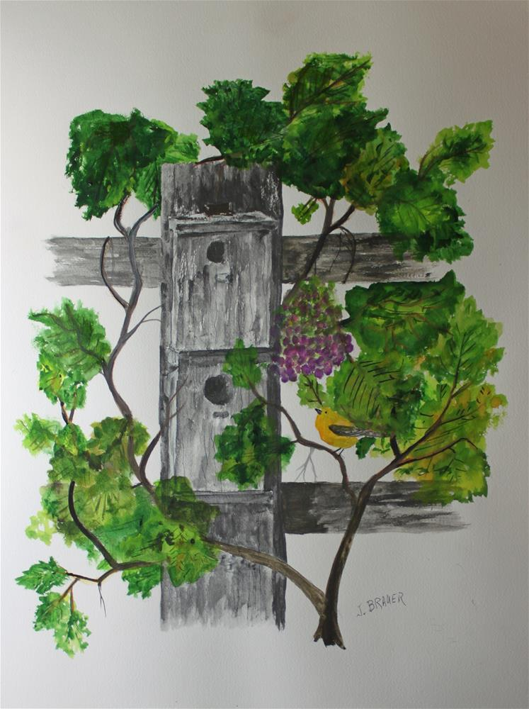 """Bird Condo"" original fine art by Jack Brauer"