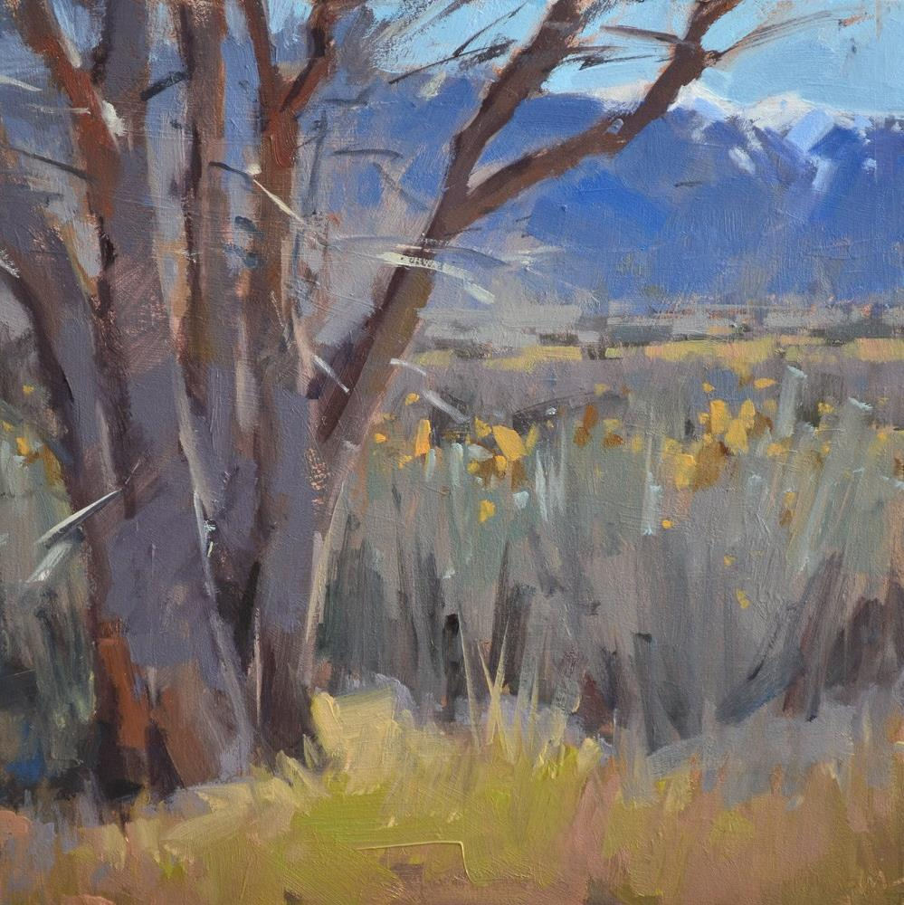 """Taos Grays and Blues"" original fine art by Carol Marine"