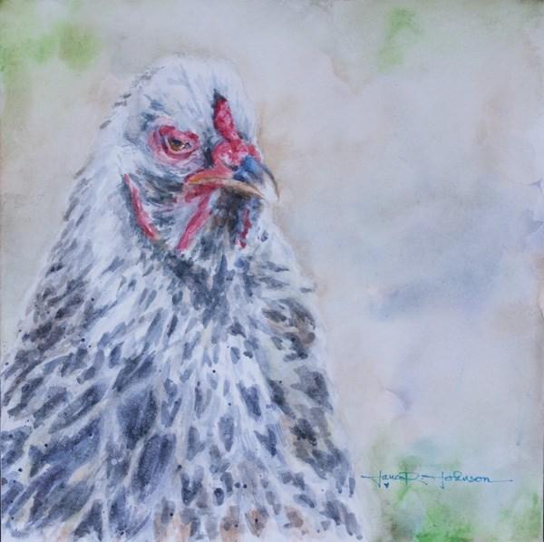 """Grumpy Chicken"" original fine art by Jana Johnson"