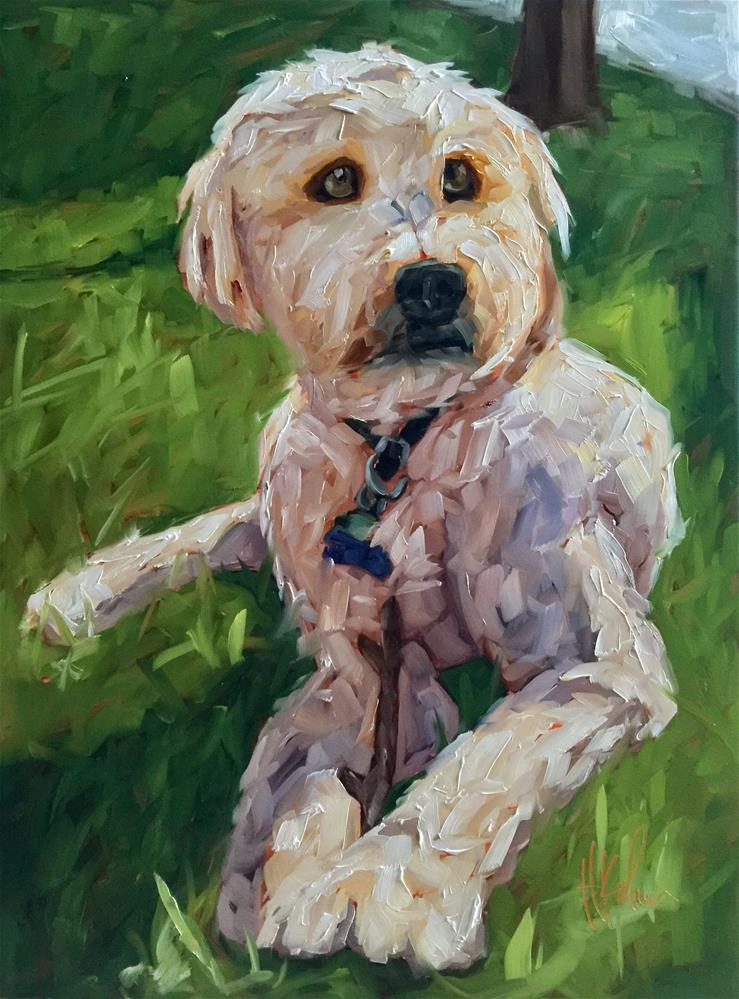 """Oliver"" original fine art by Hallie Kohn"
