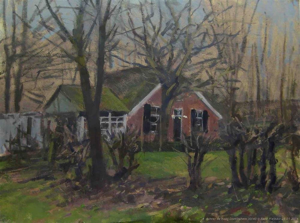 """Behind the hedge Doetinchem, The Netherlands."" original fine art by René PleinAir"