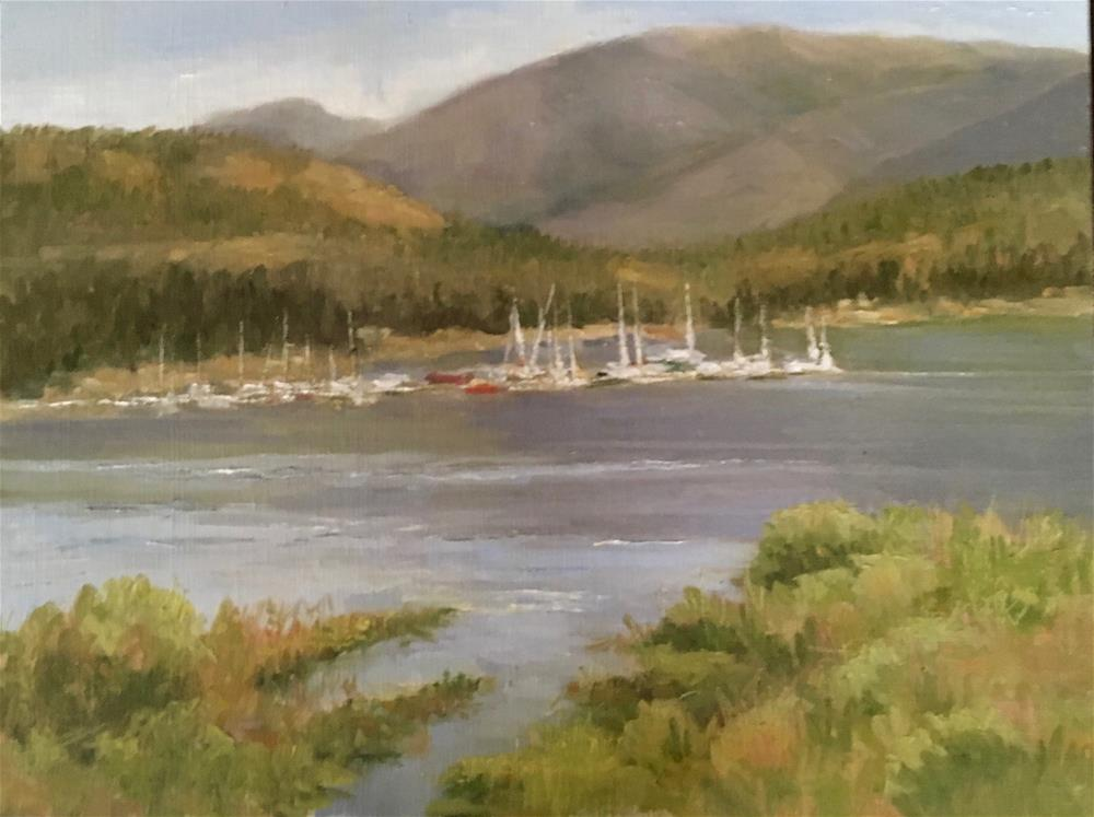 """Dillon Colorado Marina"" original fine art by Nancy Wahl"