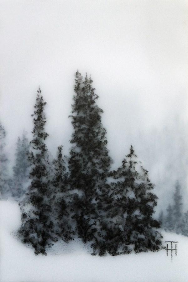 """Mountain Spruce V"" original fine art by Terri Heinrichs"