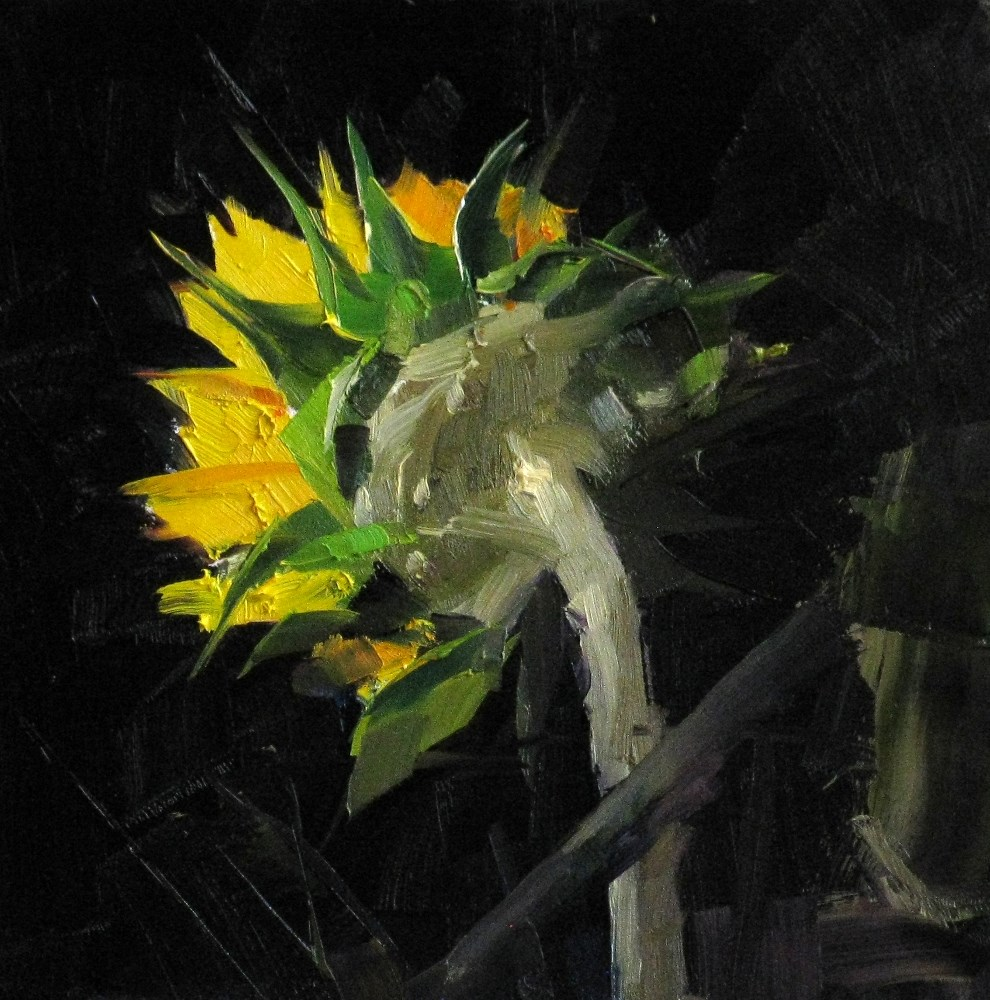 """Sunflower Study 3"" original fine art by Qiang Huang"