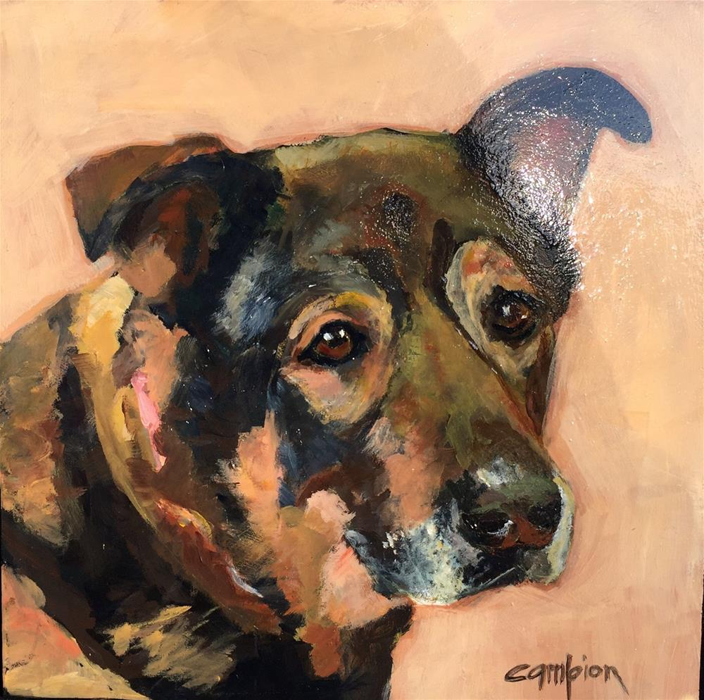 """Buddy"" original fine art by Diane Campion"