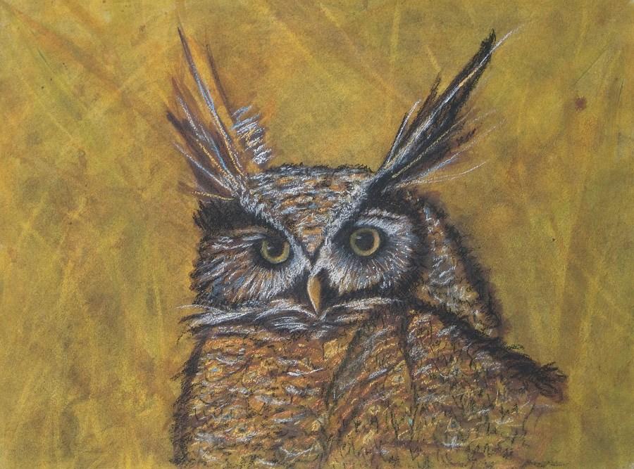 """""""I See You"""" original fine art by karen richardson"""