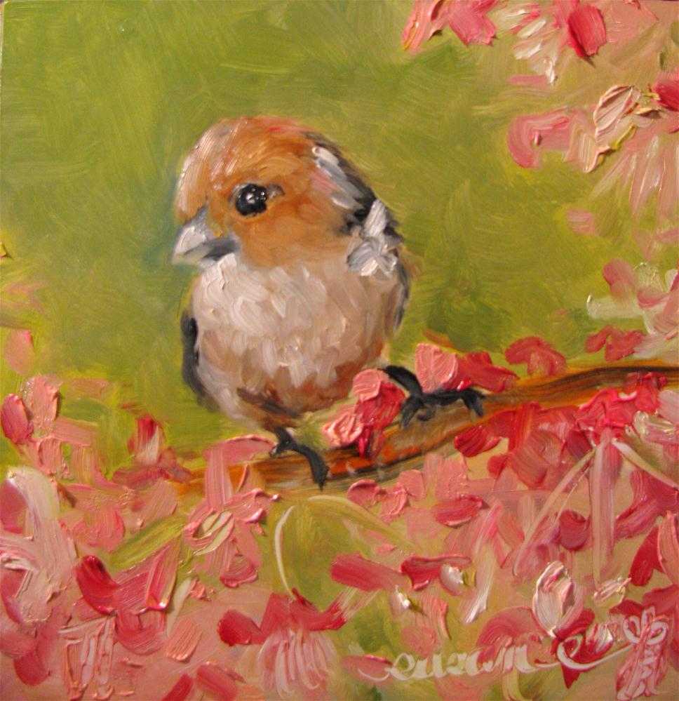 """Vinous-throated Parrotbill and Spring blossoms"" original fine art by Susan Elizabeth Jones"