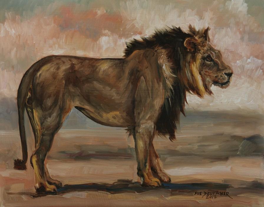 """""""Lion"""" original fine art by Sue Deutscher"""