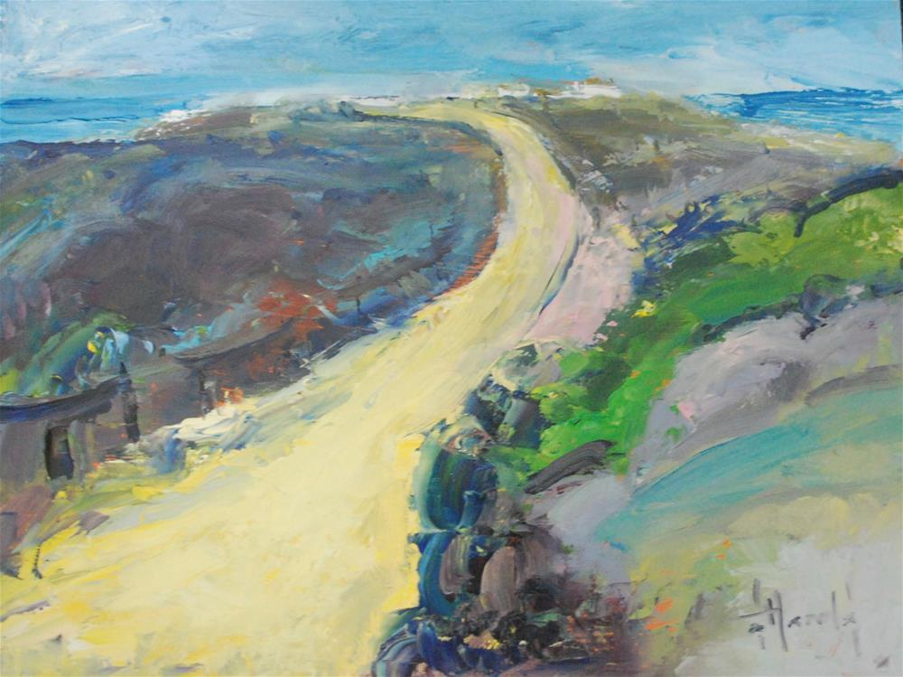 """Path At Crystal Cove"" original fine art by Deborah Harold"