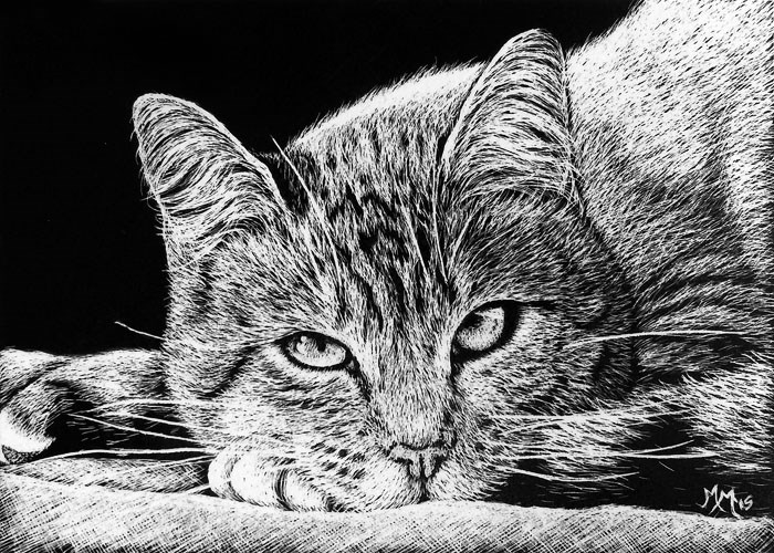 """Kitty"" original fine art by Monique Morin Matson"