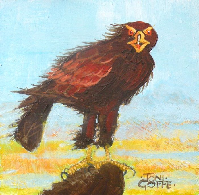 """Golden Eagle"" original fine art by Toni Goffe"
