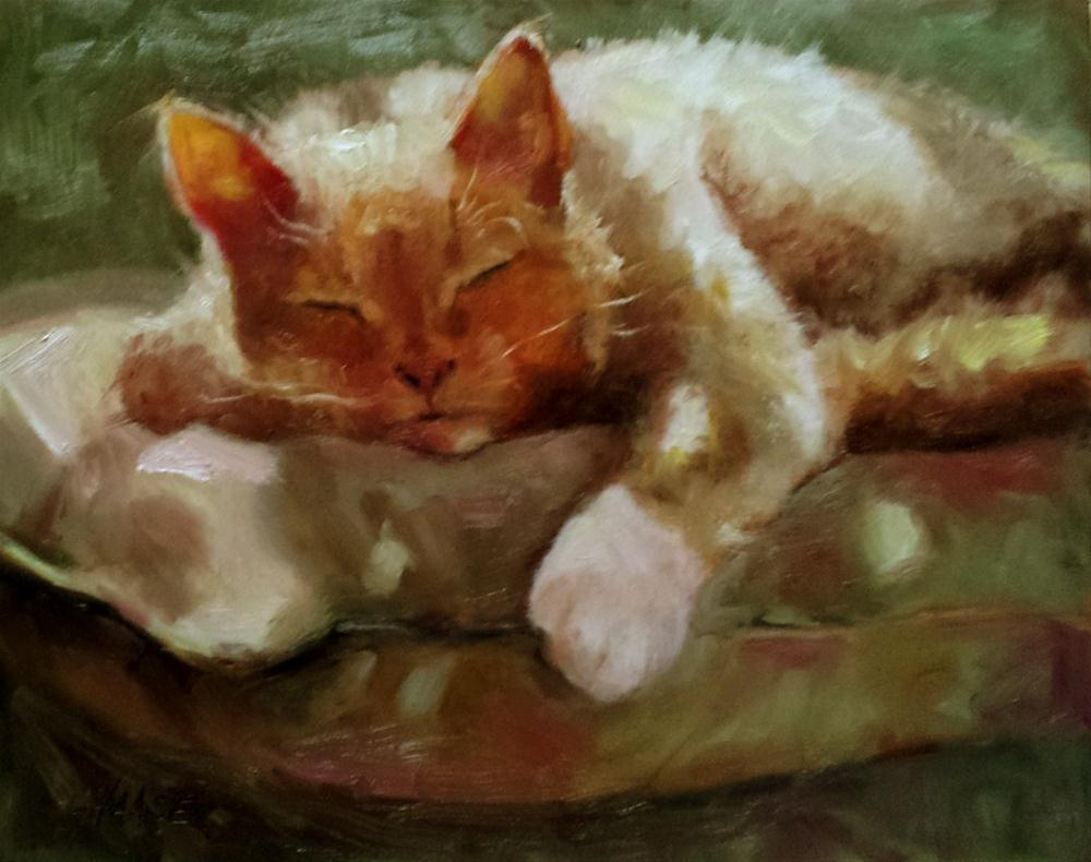 """Cat Nap"" original fine art by Cindy Haase"