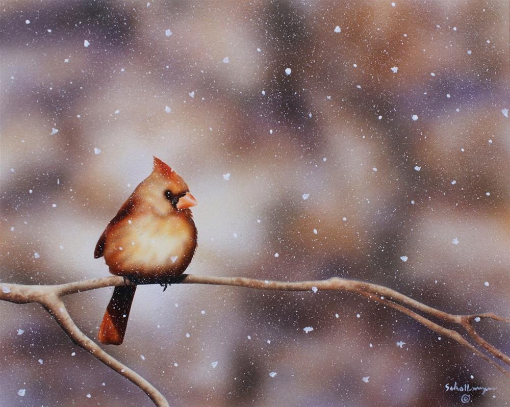 """Female Cardinal in Snow"" original fine art by Fred Schollmeyer"