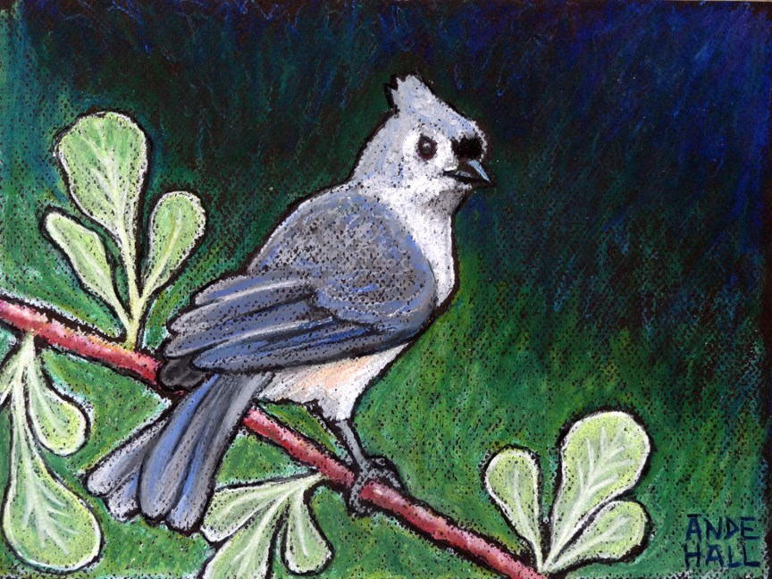 """Tufted Titmouse"" original fine art by Ande Hall"