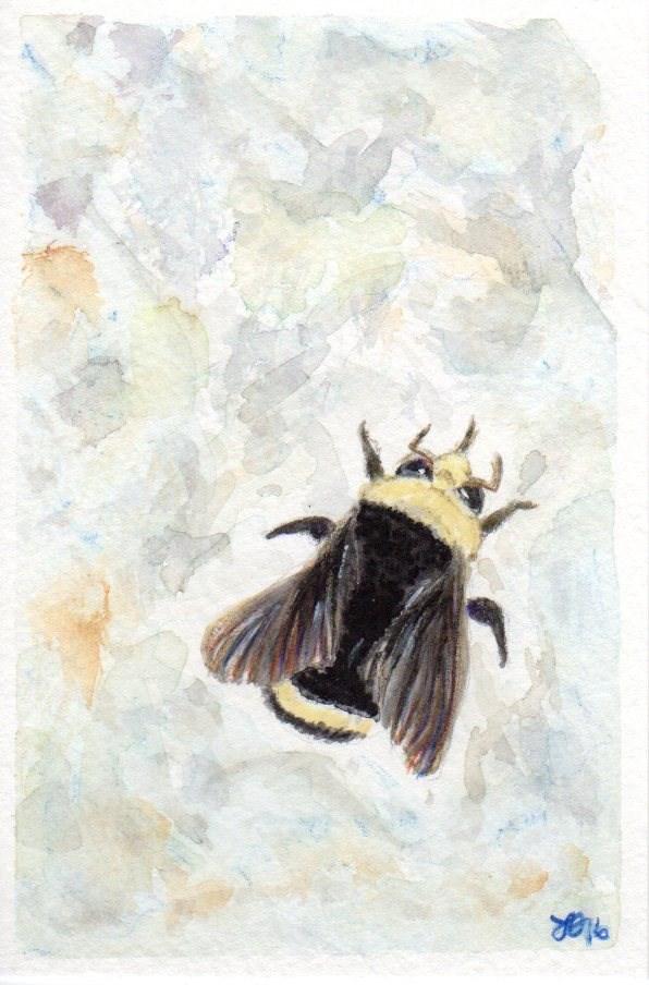 """Bumble Bee"" original fine art by Laura Denning"