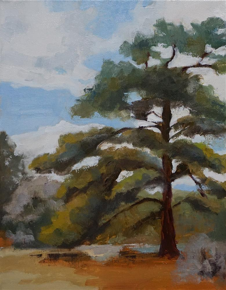 """Old Tree"" original fine art by Catherine Van Berg"