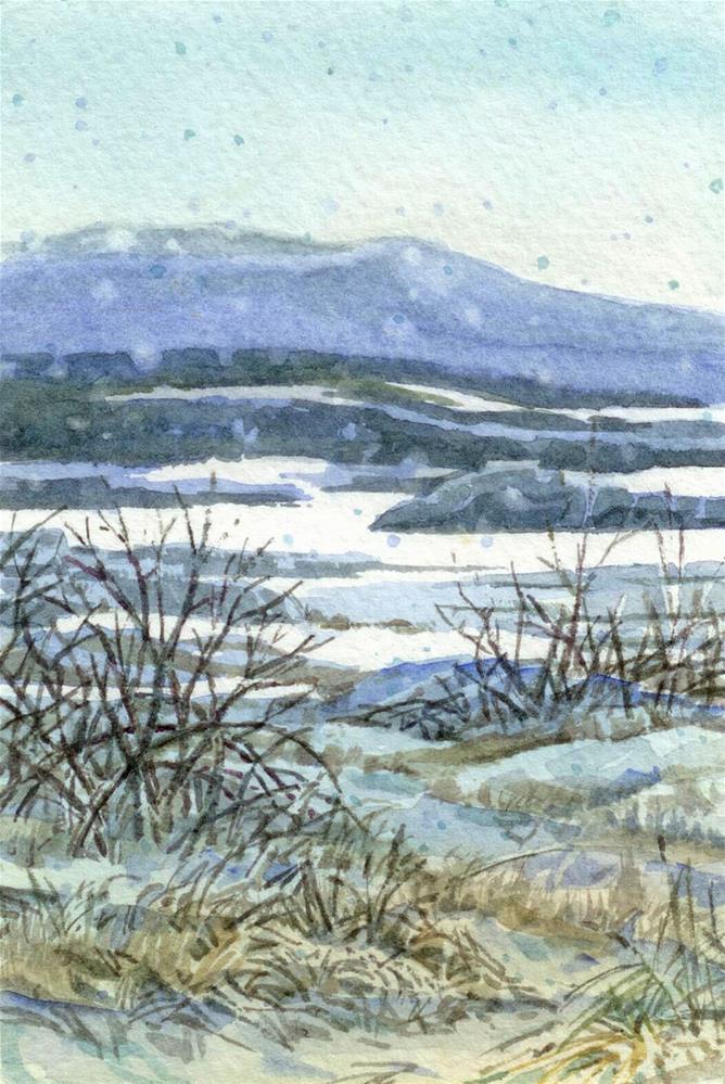 """Edge of the Lake Sedge"" original fine art by Nicoletta Baumeister"