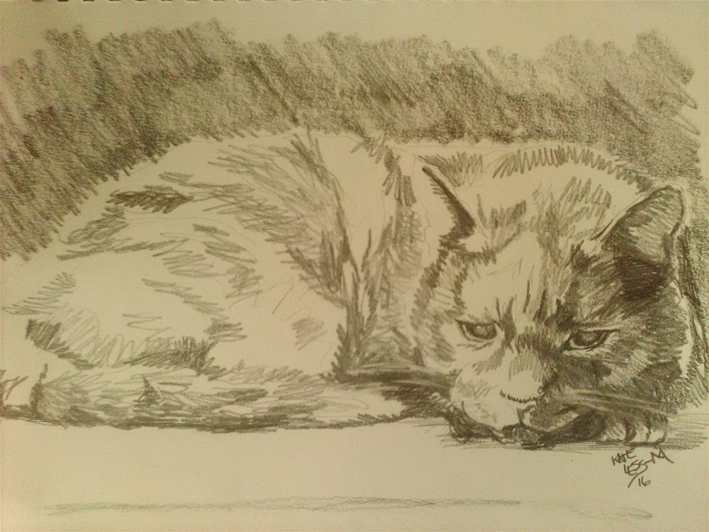 """Old Cat"" original fine art by Kate Less-Madsen"