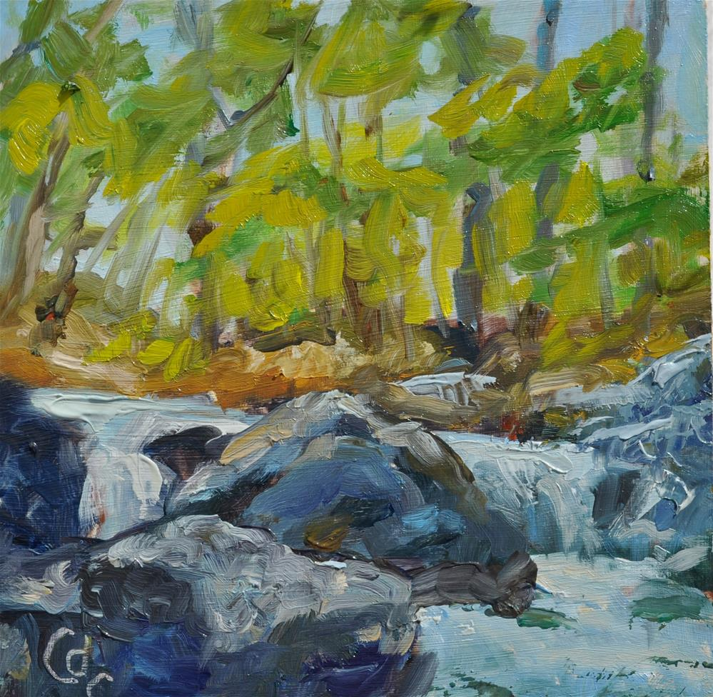 """Spring Run Off"" original fine art by Catherine Crookston"