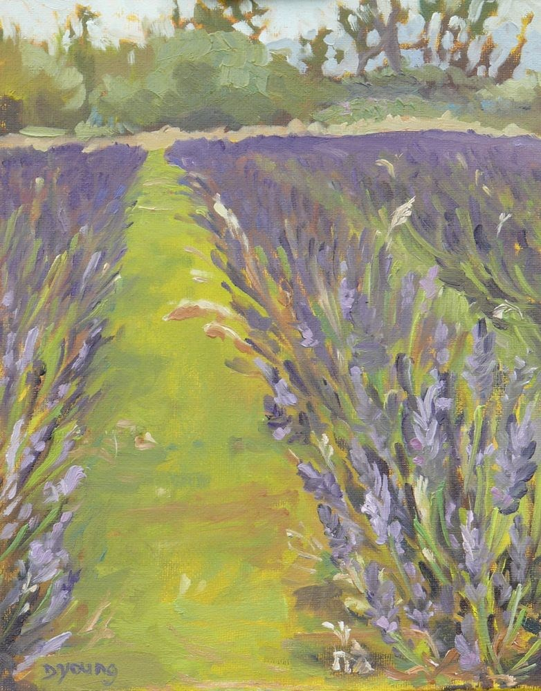 """Lavender Fields, oil on canvas board, 10x8"" original fine art by Darlene Young"