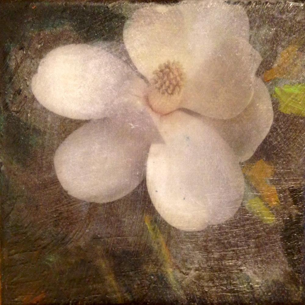 """Magnolia"" original fine art by barbara quast"