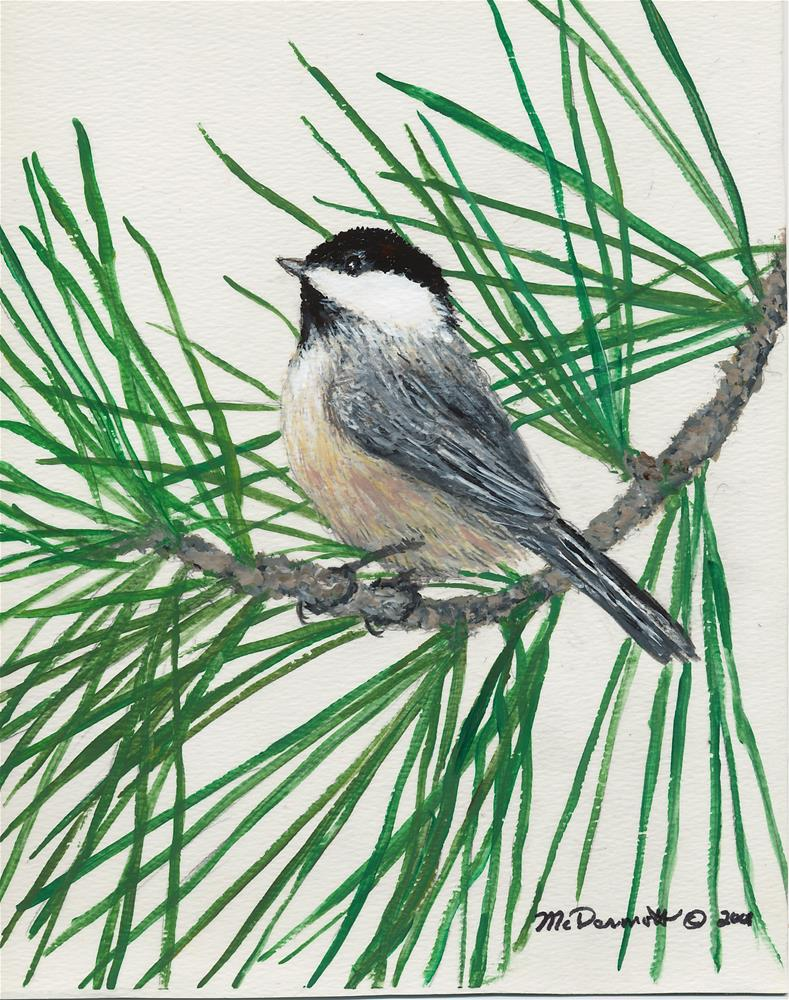 """White Pine Chickadee"" original fine art by Kathleen McDermott"