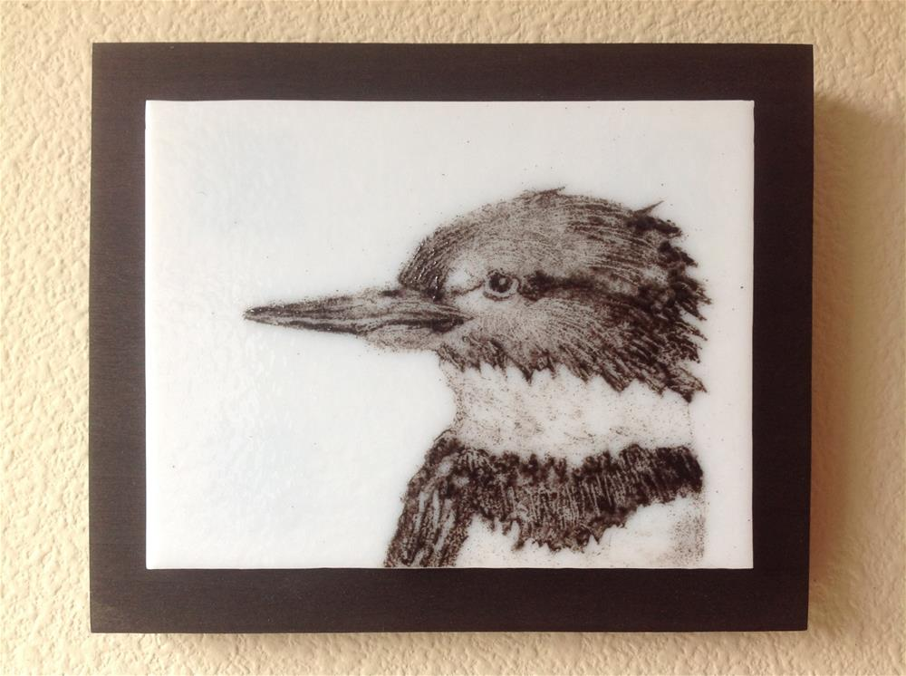 """Belted Kingfisher Portrait"" original fine art by Calloway Meiners"