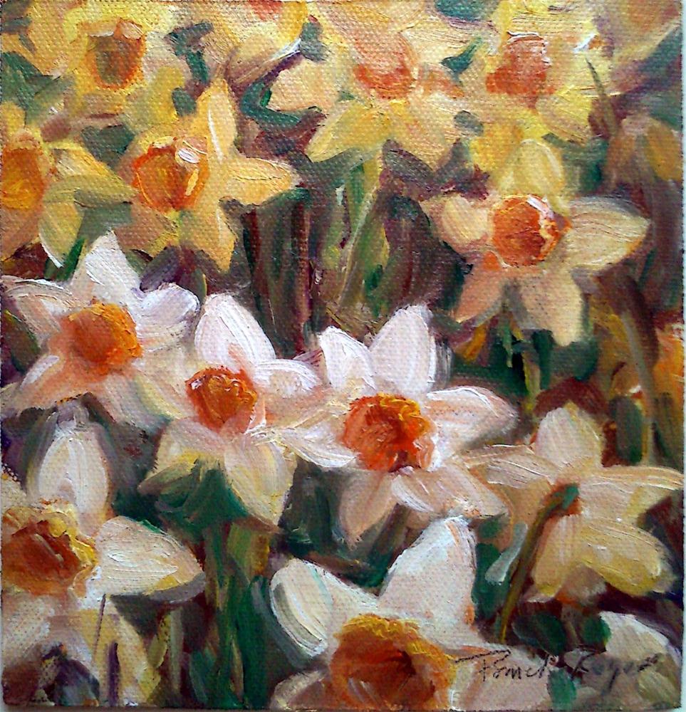 """Shy Daffodil"" original fine art by Pamela Jane Rogers"