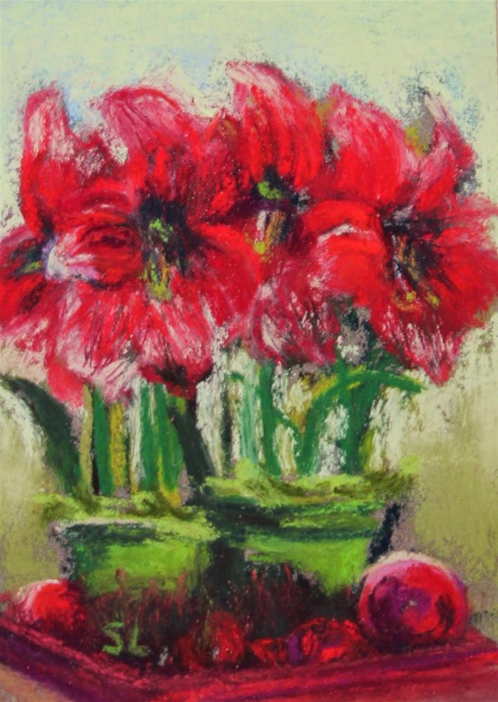 """Christmas Amaryllis"" original fine art by Sharon Lewis"