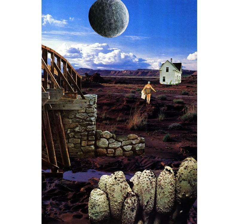 """The Bath - surreal, fantasy traditional collage"" original fine art by Linda Apple"