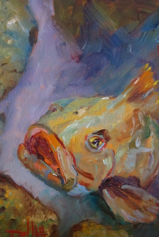 """Grouper"" original fine art by Delilah Smith"