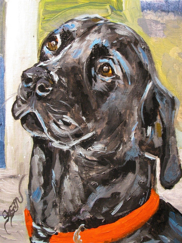 """Knox"" original fine art by Susan Elizabeth Jones"