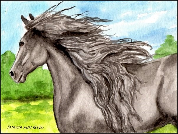 """The Friesian"" original fine art by Patricia Ann Rizzo"