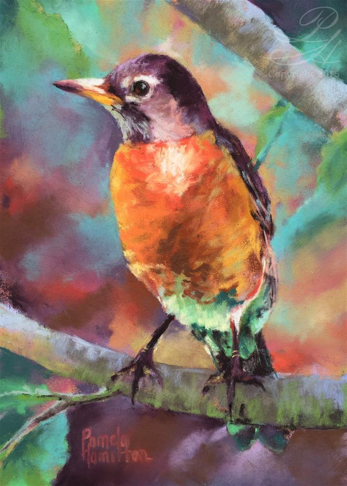 """Robin"" original fine art by Pamela Hamilton"