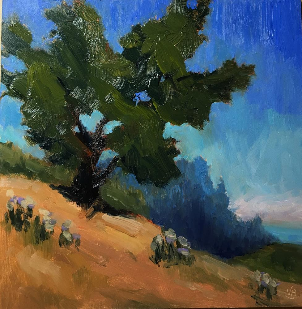 """Coastal Tree"" original fine art by Victoria  Biedron"