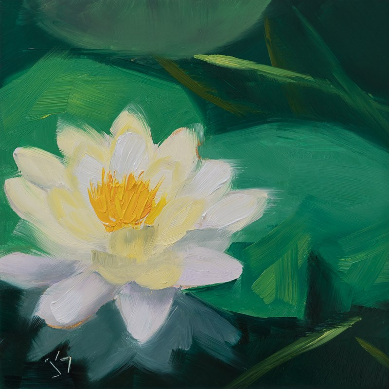 """Waterlily in the Park"" original fine art by Johnna Schelling"