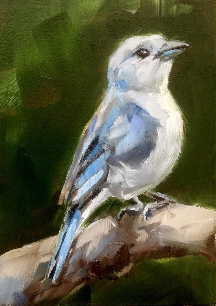 """Sayaca Tanager"" original fine art by Gary Bruton"