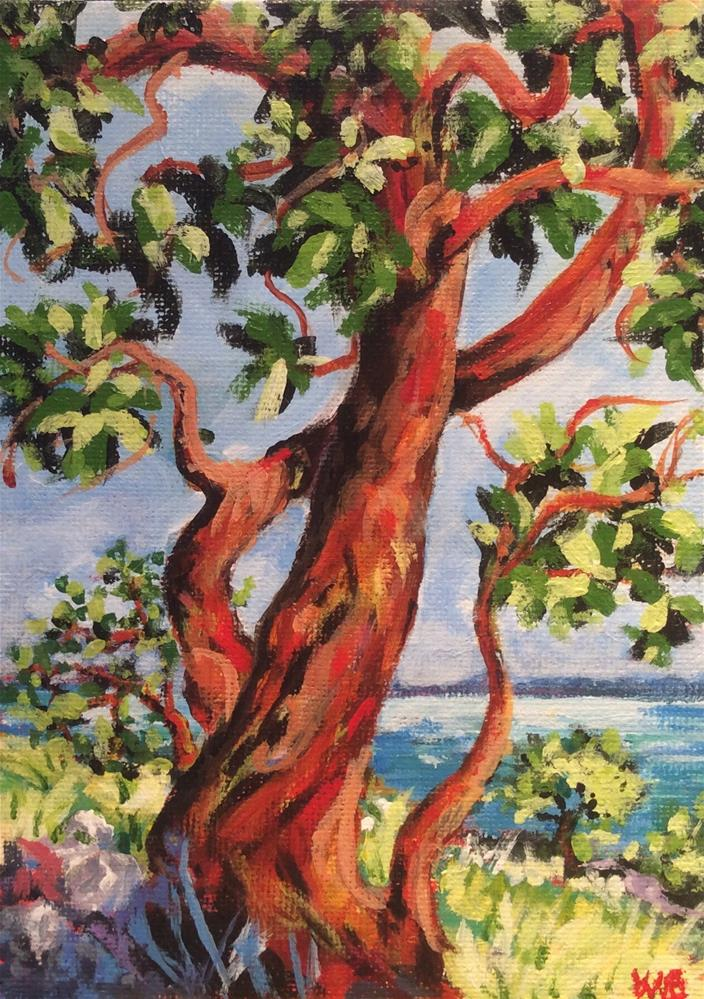 """Arbutus"" original fine art by wendy black"