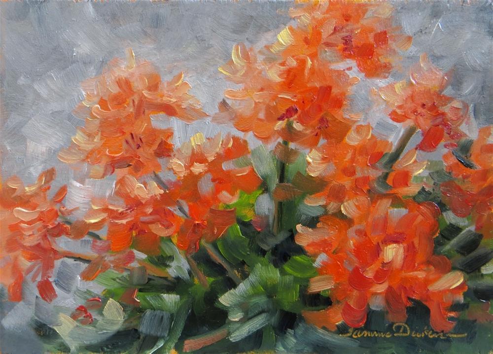 """Salmon Geraniums"" original fine art by Tammie Dickerson"