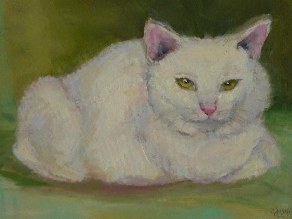"""White Kitty"" original fine art by Carol Josefiak"