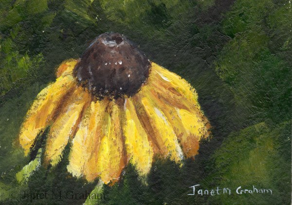 """Yellow Daisy ACEO"" original fine art by Janet Graham"