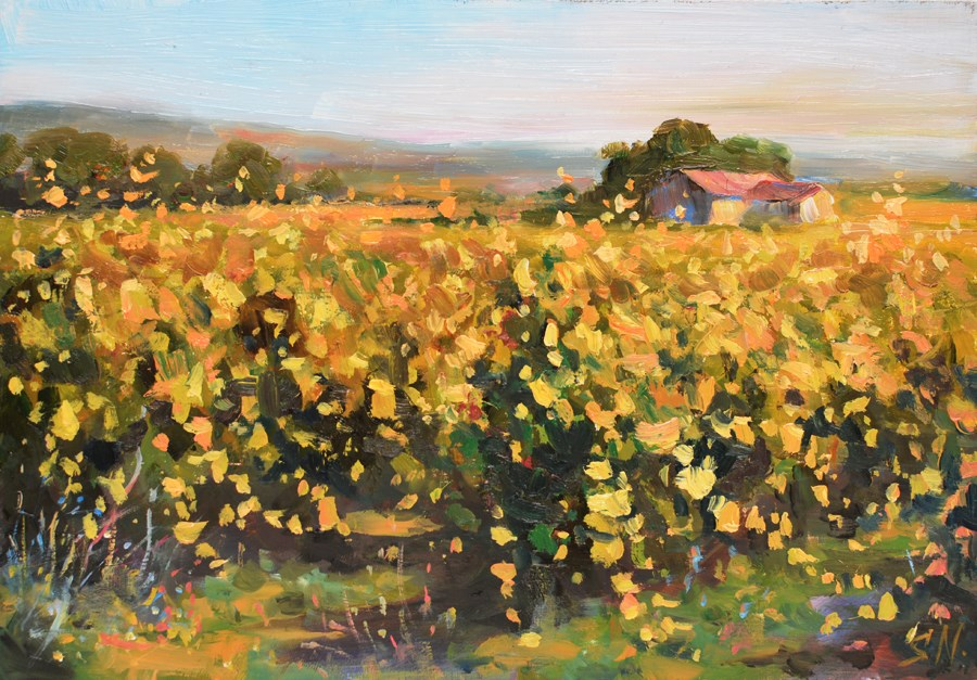 """Vineyard – evening light. Northen France. Landscape oil painting."" original fine art by Nick Sarazan"