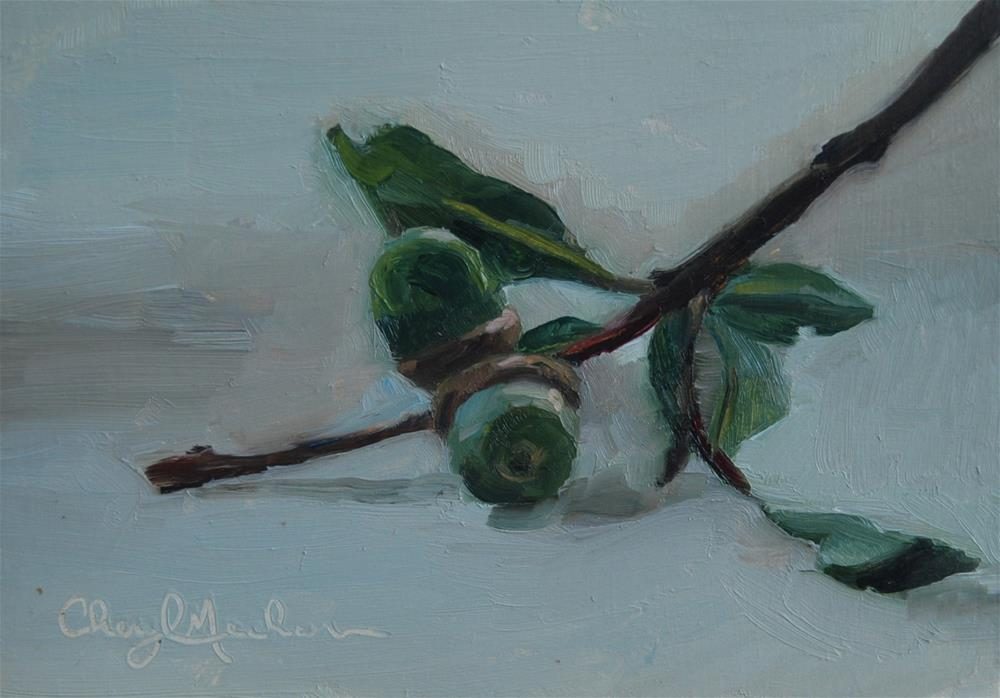"""Acorns"" original fine art by Cheryl Meehan"