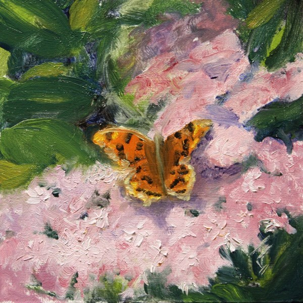 """Flutter By"" original fine art by Jane Frederick"