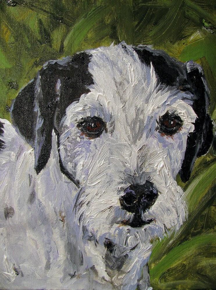 """Booker"" original fine art by Susan Elizabeth Jones"