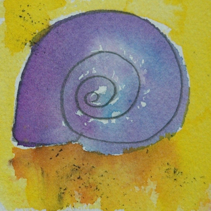 """Little shell"" original fine art by Ulrike Schmidt"