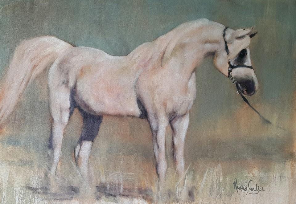 """""""Arabian stallion"""" original fine art by Rentia Coetzee"""