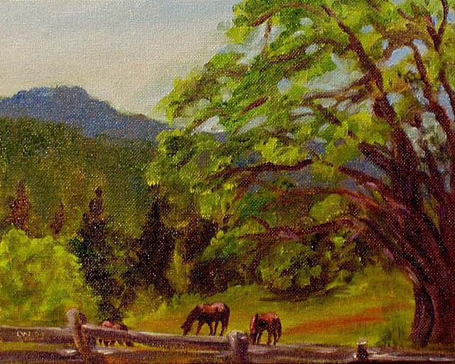 """Horses Grazing"" original fine art by Cietha Wilson"