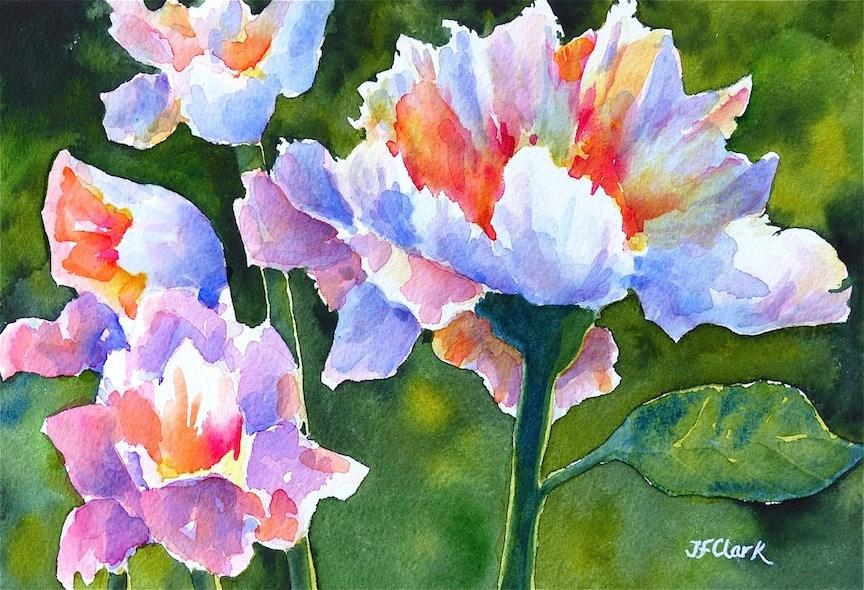 """Sunny Side Up"" original fine art by Judith Freeman Clark"