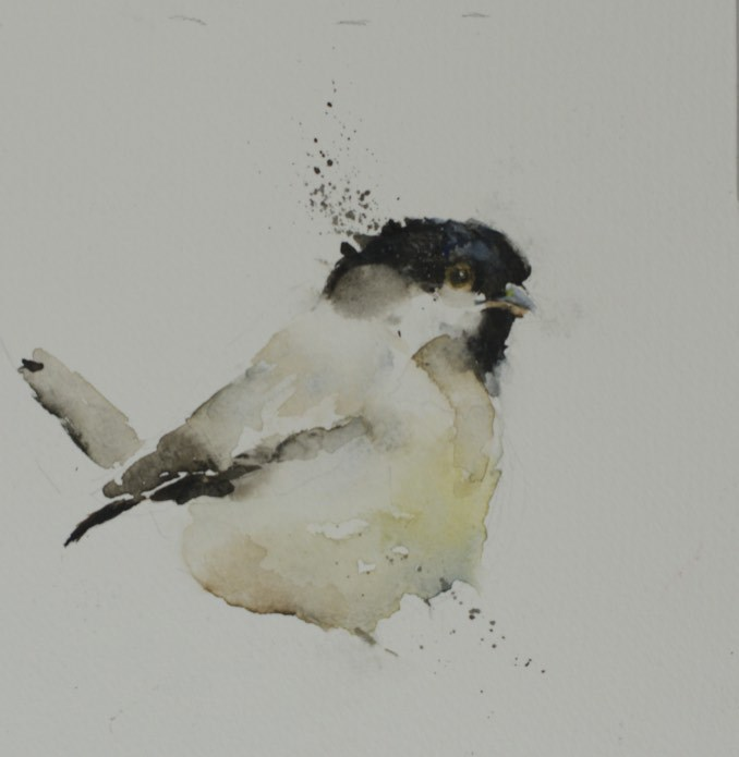 """Sketch Series #5 (baby chickadee)"" original fine art by Sue Churchgrant"